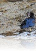 dsc 9088.jpg Ibis chauve Geronticus eremita à la Barca de Vejer