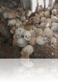 """p 1000363.jpg Visite d\'une  \""""skull cave\"""""""