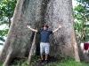 img 2183.jpg Fromager géant à Guiob, Bonbon (Croisière Camiguin aux Philippines)