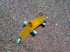 epv 0257.jpg Nudibranche Thecacera pacifica à Seraya à Tulamben, Bali, Indonésie